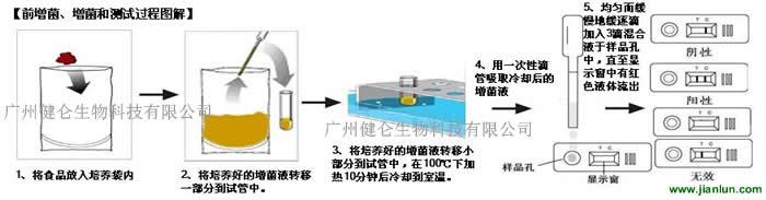 中国生物器材网--大肠杆菌o157快速检测试卡/试剂
